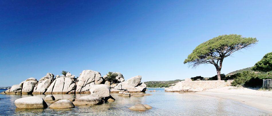 Salto in Sardegna o Corsica